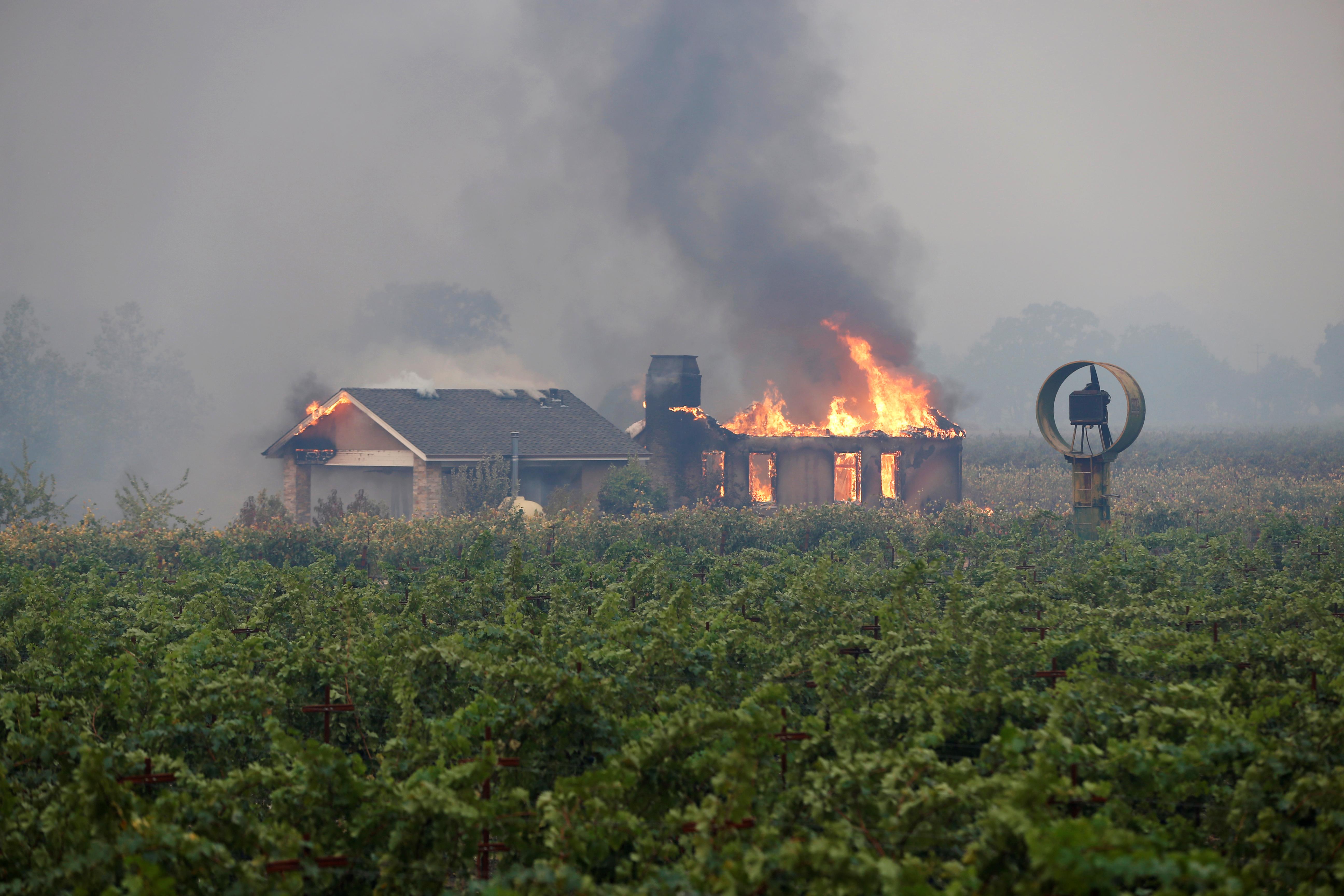 منزل يحترق وسط كروم العنب في كاليفورنيا