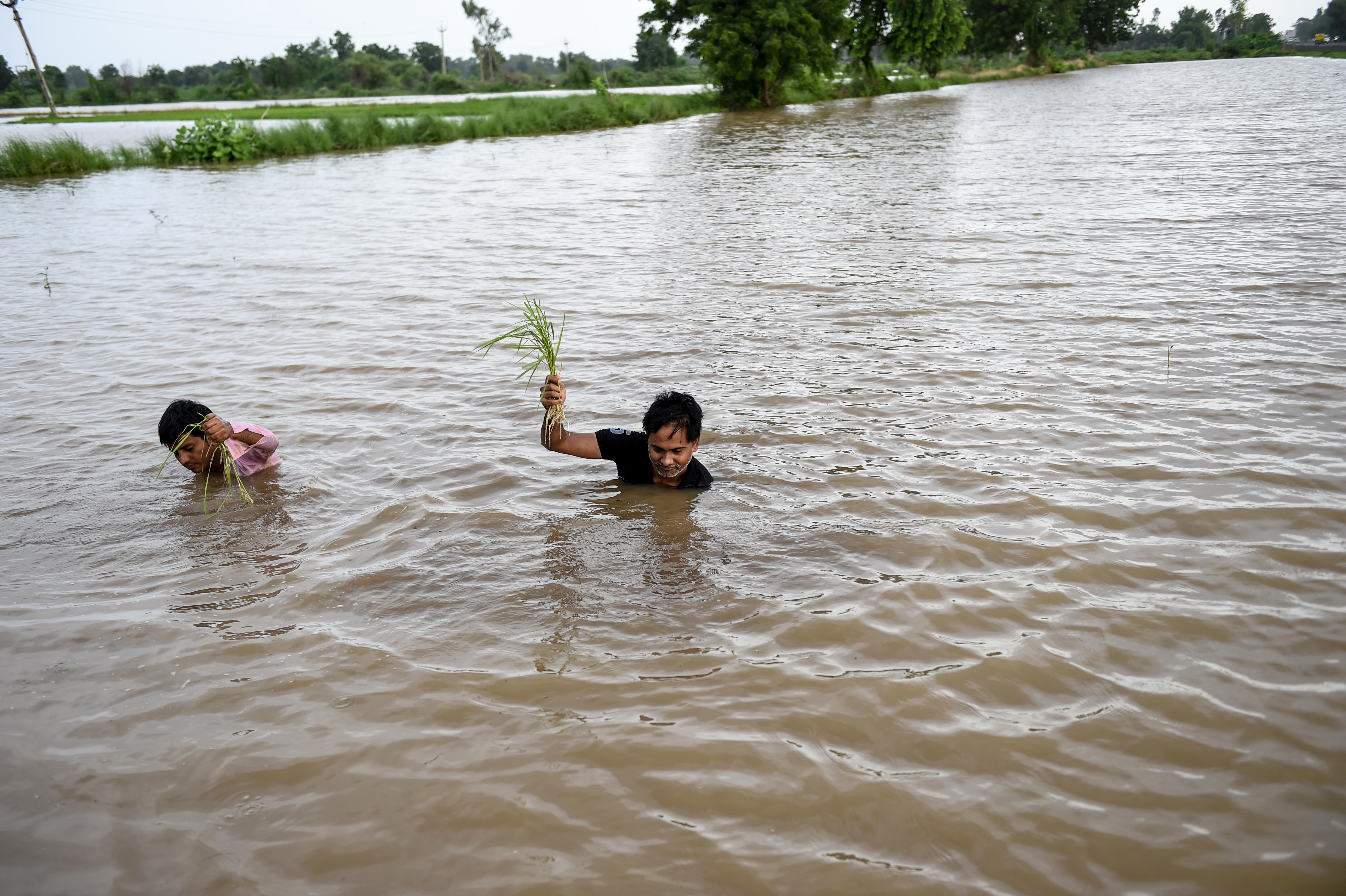 أجبر مئات الآلاف من السكان على النزوح عن منازلهم بسبب الفيضانات في الهند