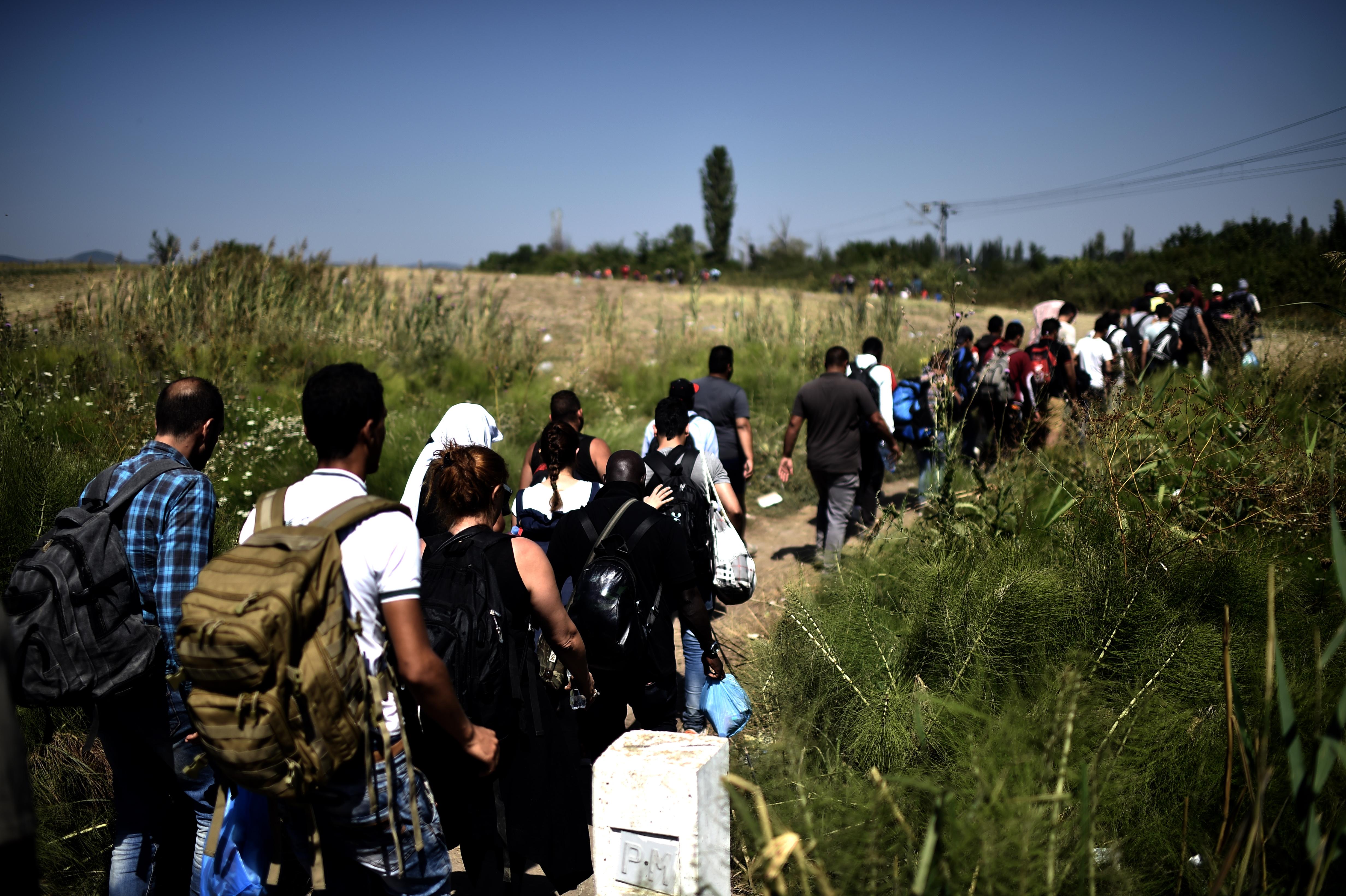 لاجئون سوريون يكملون سيرهم بعد عبور الحدود بين مقدونيا وصربيا