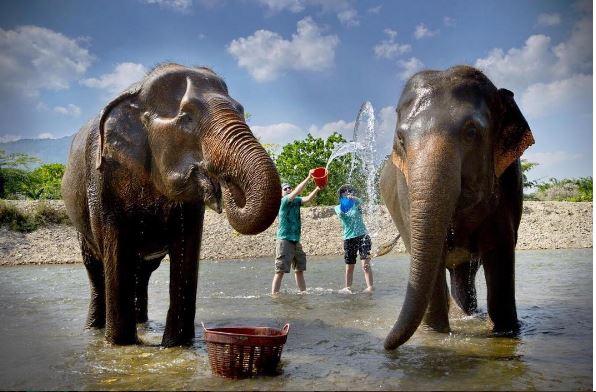في تايلند