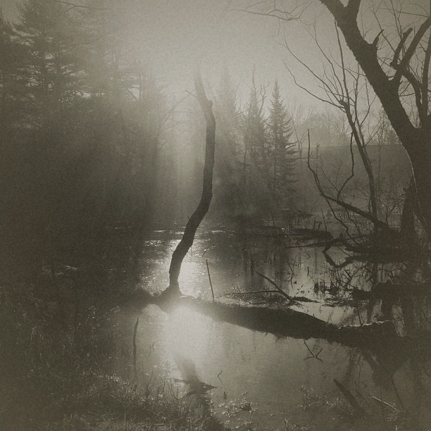 صورة لمنظر طبيعي التقطتها المصورة سوزان تاتل باستخدام آيفون 5 وعدلتها باستخدام تطبيقات Camera+ و VintageFX