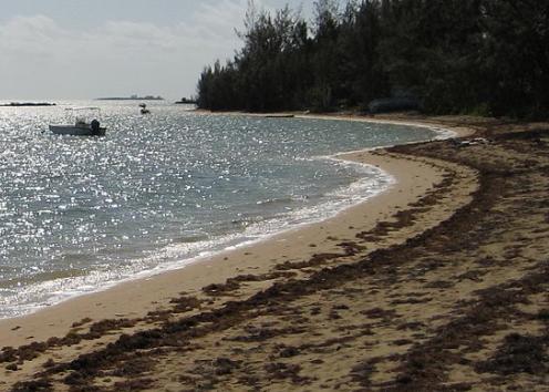 جزيرة خاصة في الباهاما