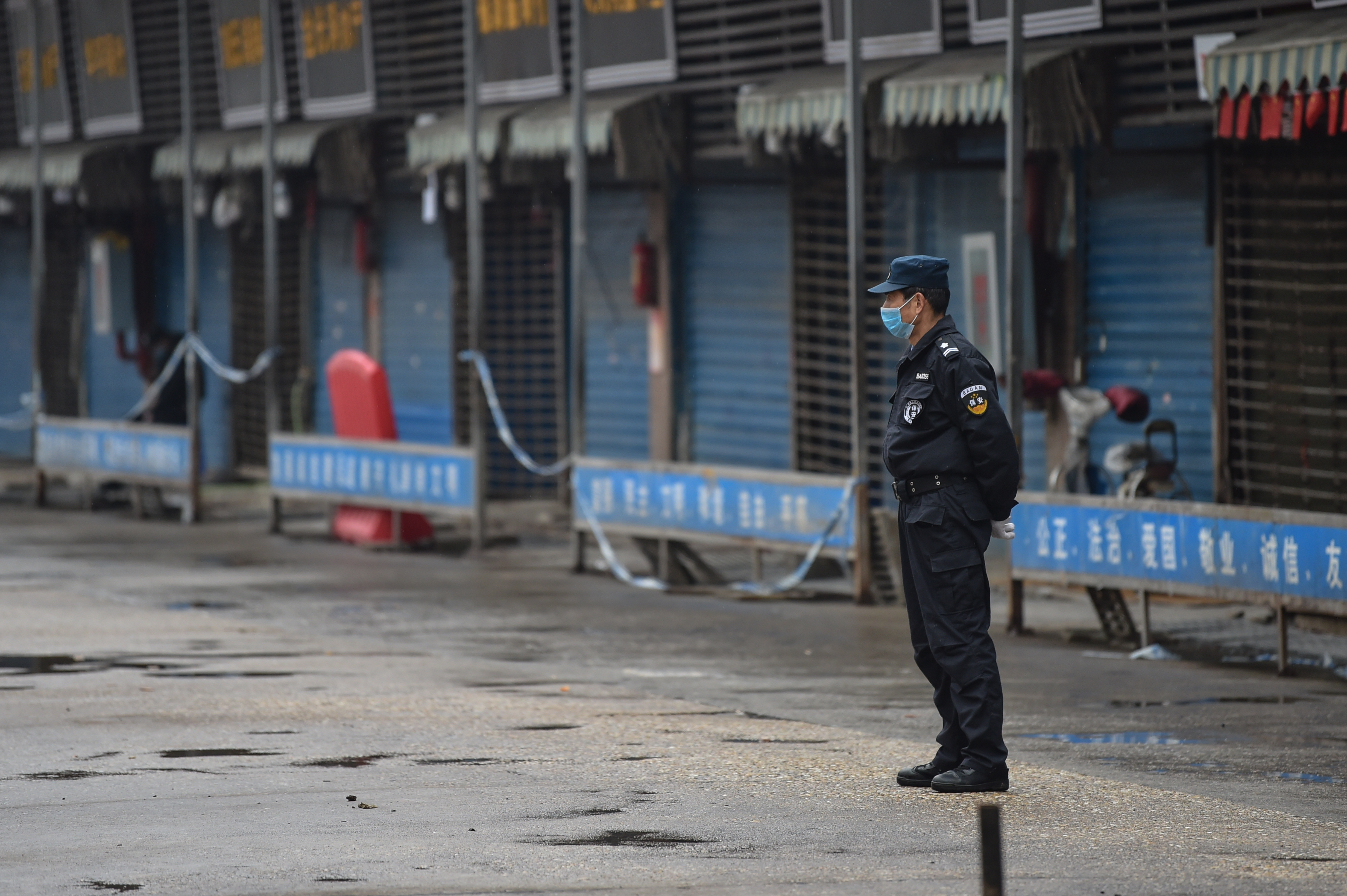 شرطي صيني خارج سوق الأسماك الذي انتشر منه فيروس كورونا المستجد في مدينة ووهان- 24 يناير 2020