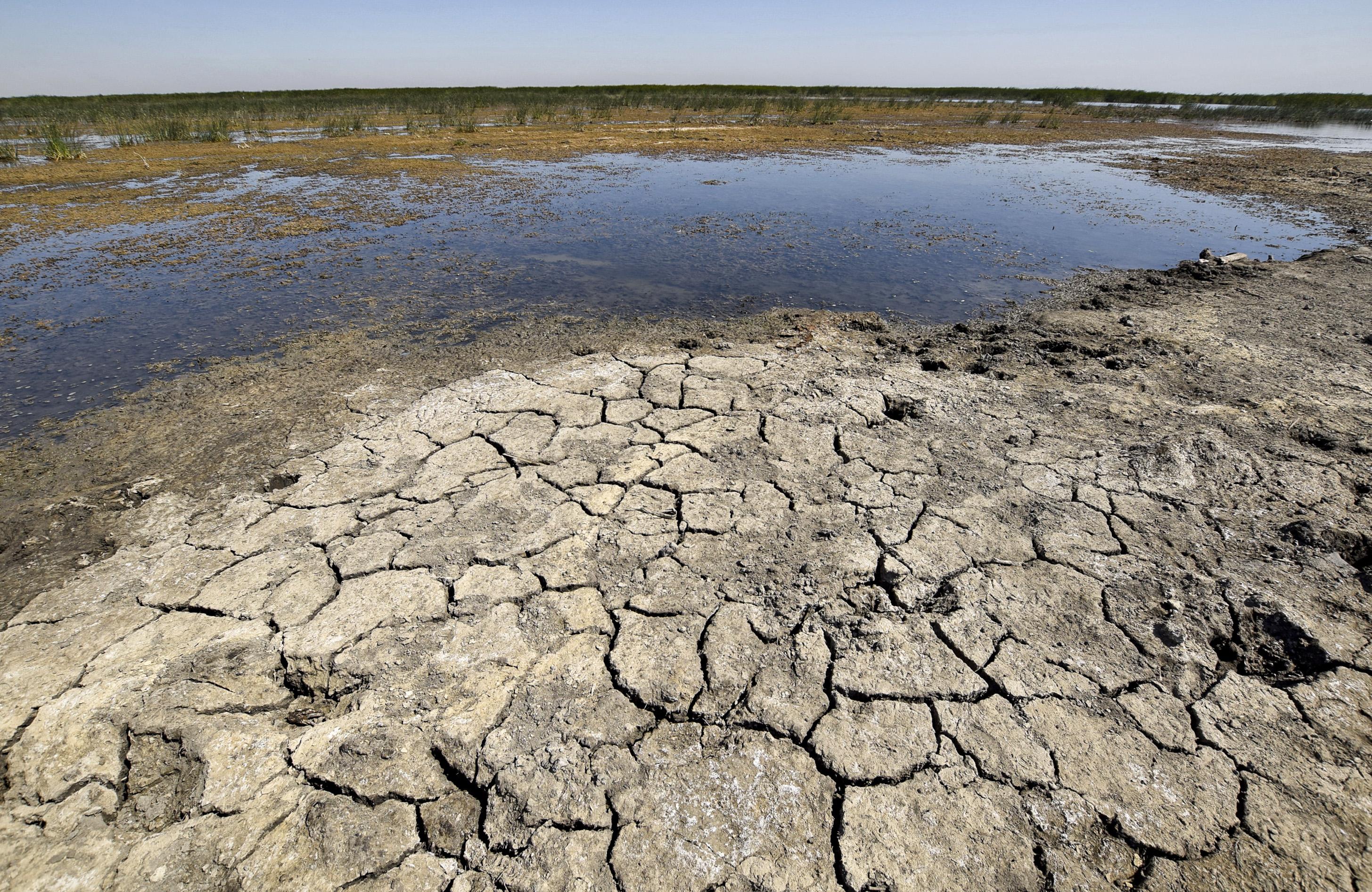 تصحر 69 % من أراض العراق الزراعية