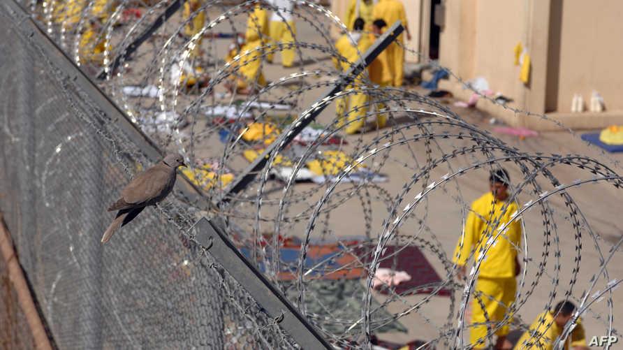 سجناء في أبو غريب -أرشيف