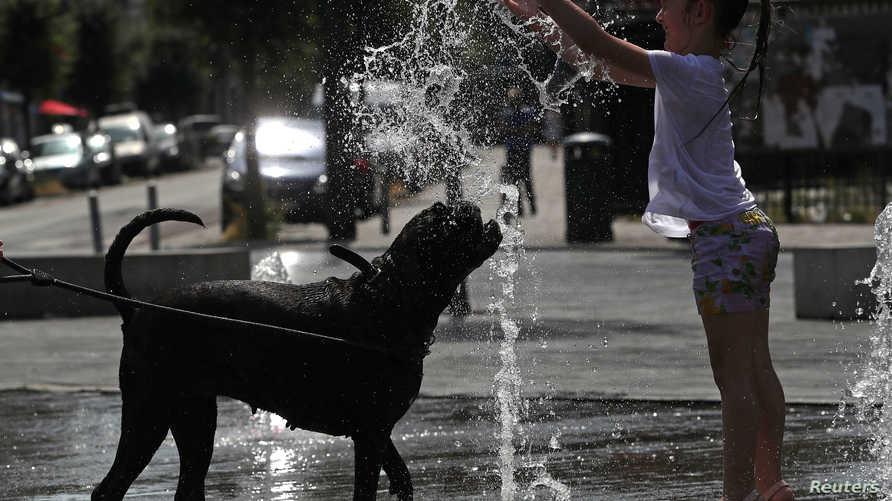 طفلة تلعب مع كلبها عند نافورة مياه في بروكسل، بلجيكا
