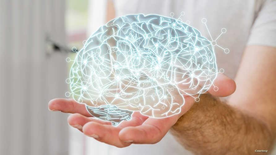 الدماغ أيضا يتضرر