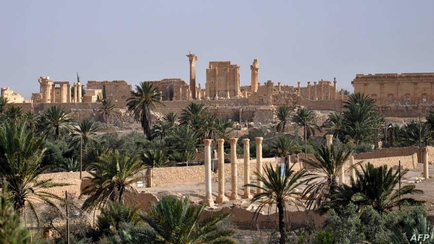 المنطقة الأثرية في تدمر