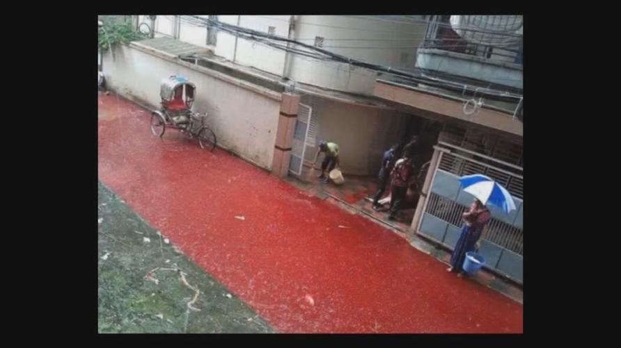 الدماء ملأت بعض شوارع العاصمة البنغالية