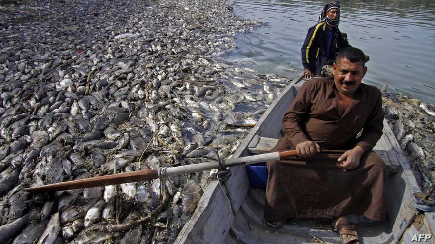 نفوق الأسماك في نهر الفرات أثار مخاوف عامة بشأن تلوث المياه