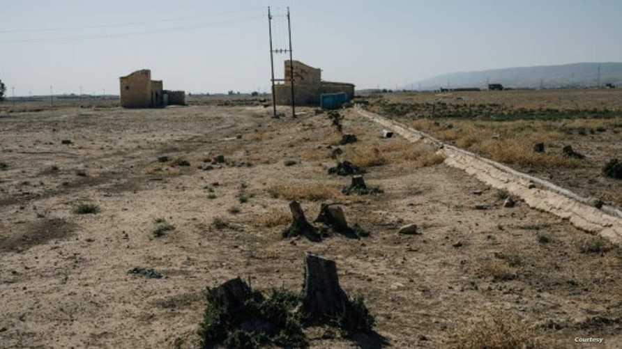 صورة تظهر التصحر الذي أصاب المناطق التي استهدف داعش زراعتها بالتخريب والتدمير في العراق_ الصورة من  أمنستي