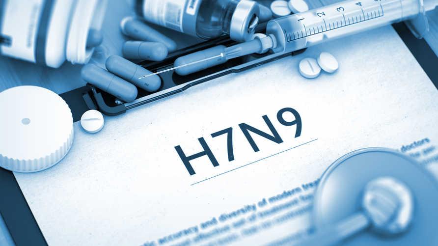 فيروس H7N9