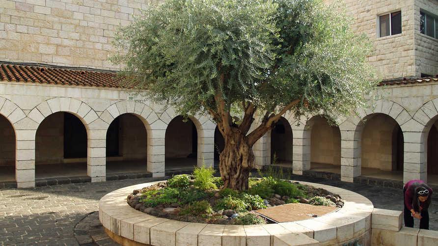"""كنيسة """"السمك والخبز"""" على ضفاف بحيرة طبريا شمال إسرائيل"""