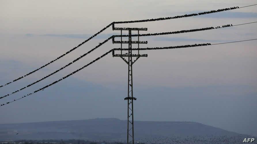 خطوط كهرباء تابعة لشركة الكهرباء الإسرائيلية- أرشيفية