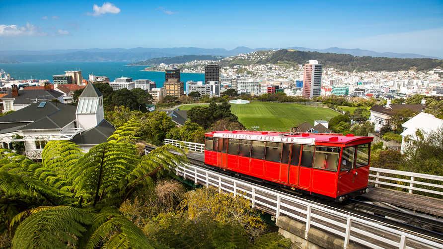 مشهد من ولينغتون عاصمة نيوزيلندا