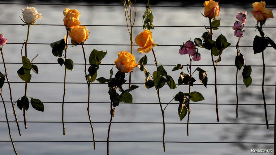 زهور مثبتة على أسلاك إكراما لضحايا مركب الغوص الذي احترق في كاليفورنيا