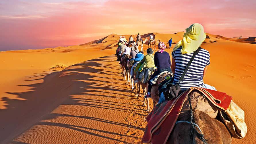 سياح في صحراء المغرب