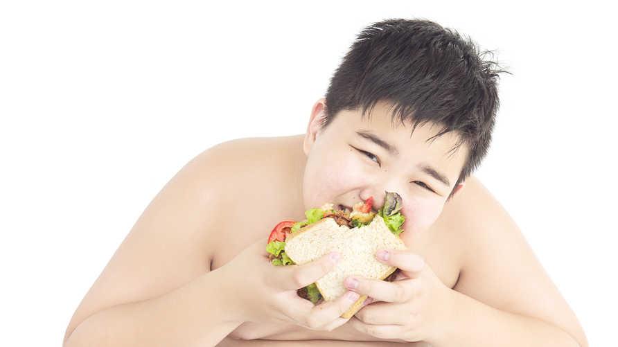 تناول الوجبات السريعة يرفع معدلات السمنة وسط الأطفال