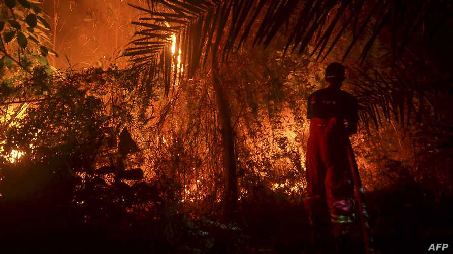 نيران مشتعلة في غابات بيكانبارو