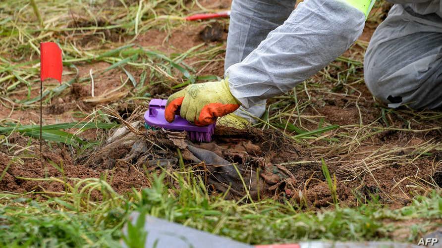 أحد المتخصصين يبحث عن أدلة جنائية قرب مقبرة جماعية تضم رفات مئات الأيزيديين