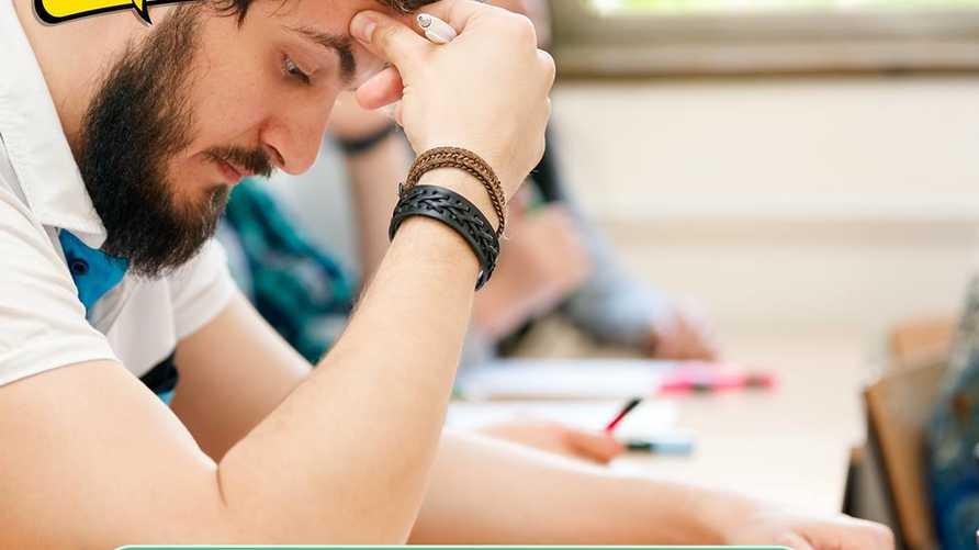 دردش تاغ التخصص الجامعي