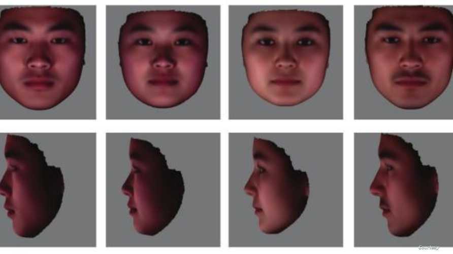 صورة من بحث علمي تظهر كيفية تشكيل وجه ذكر وأنثى اعتمادا على الحمض النووي