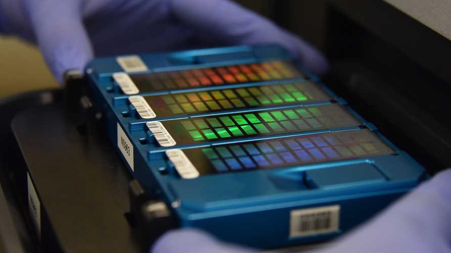 الحمض النووي مكان جديد يبحث فيه العلماء عن أجوبة تتعلق بوباء كوفيد-19