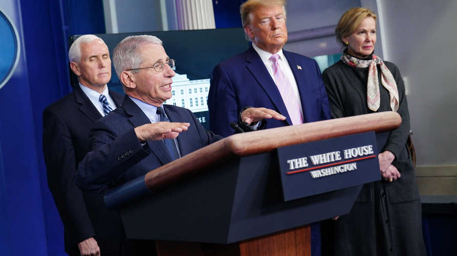 Director of the National Institute of Allergy and Infectious Diseases Anthony Fauci, with (L-R) US Vice President Mike Pence,…