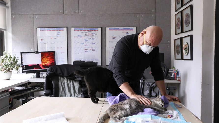 لا يوجد دليل على احتمالية أن تنقل الحيوانات الأليفة الفيروس للبشر