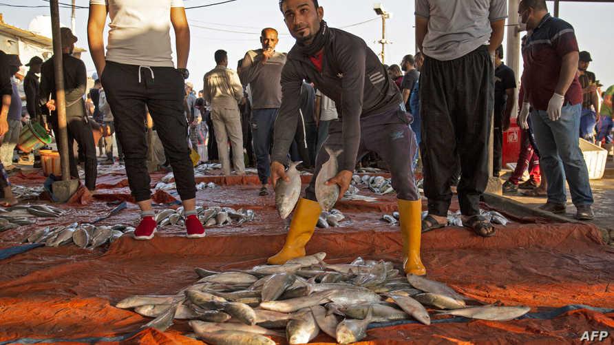رجل يقدم أسماكًا طازجة في سوق أسماك في مدينة الفاو الساحلية جنوب العراق