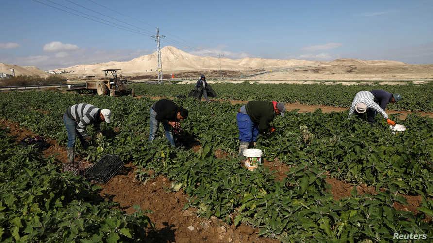 إسرائيل تخطط لضم أجزاء من الضفة الغربية ونتانياهو يصف الفرصة بالتاريخية