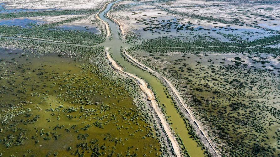 شبح التصحر يهدد ما تبقى من أراضي العراق الزراعية ومواشيه