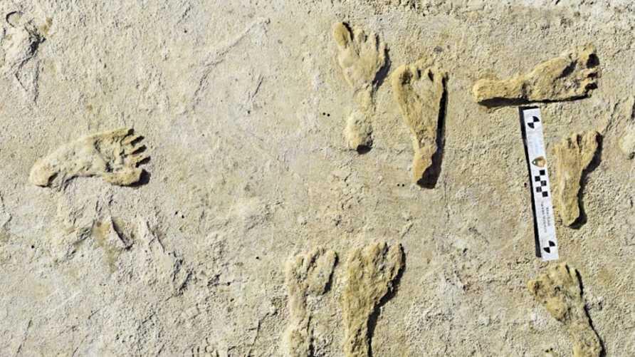تم اكتشاف آثار الأقدام لأول مرة عام 2009