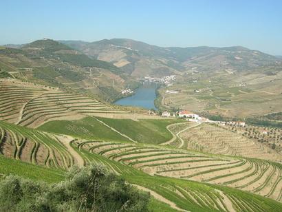 وادي نهر دورو شمال البرتغال