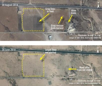 صورة بالقمر الصناعي تظهر الفرق بين عامي 2014 و2018 في إحدى المناطق حيث تم تجريف الأراضي الزراعية ولا تظهر حاليا أشجار الزيتون التي كانت مزروعة_الصورة من منظمة أمنستي