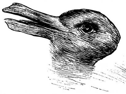 صورة أرنب أم بطة؟