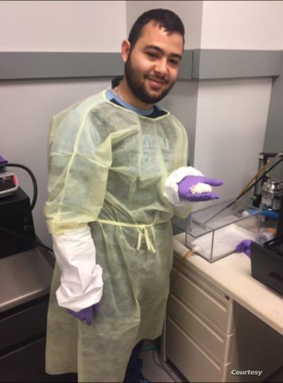 في المختبر