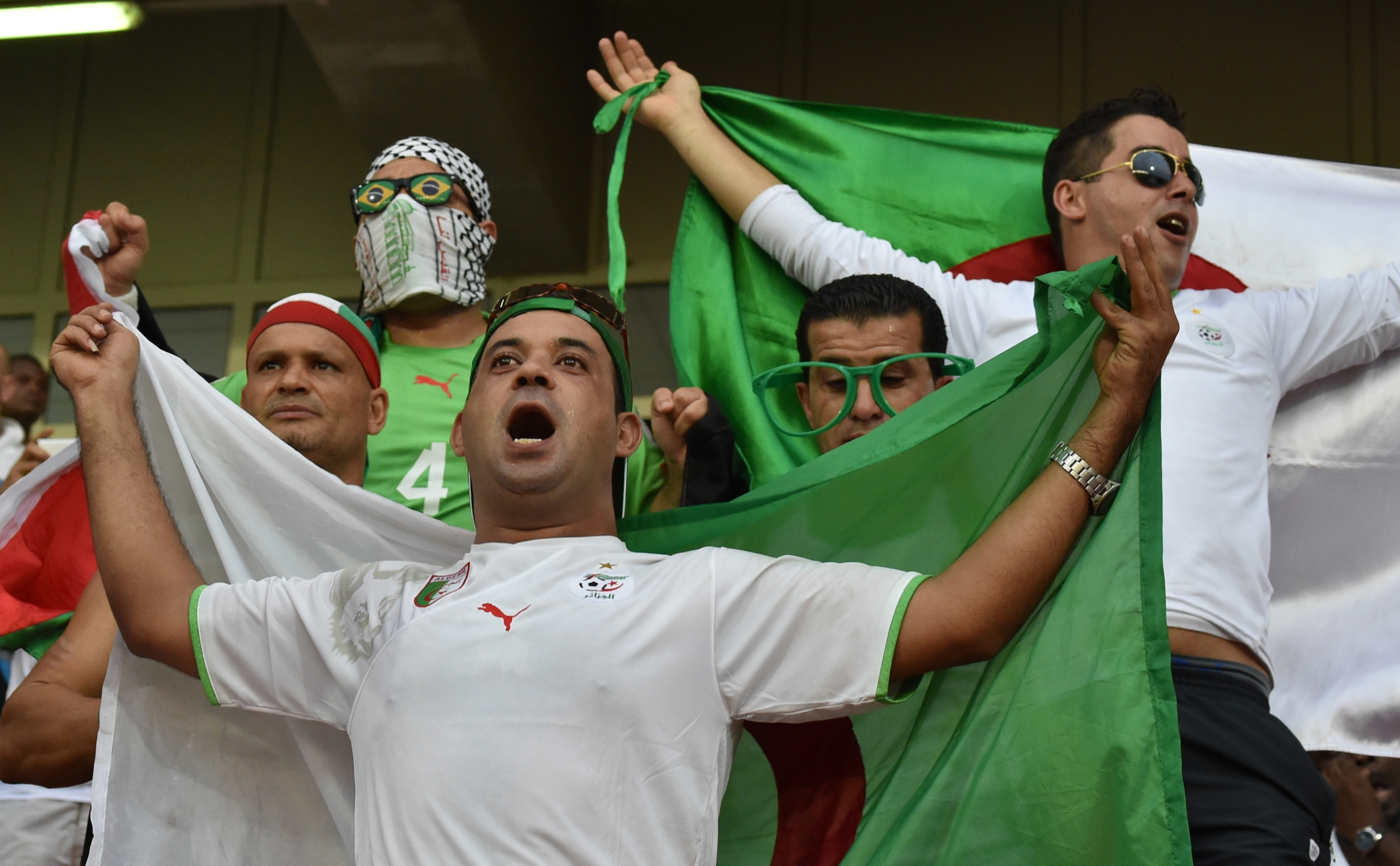 أنصار الفريق الجزائري خلال تصفيات كأس أمم إفريقيا