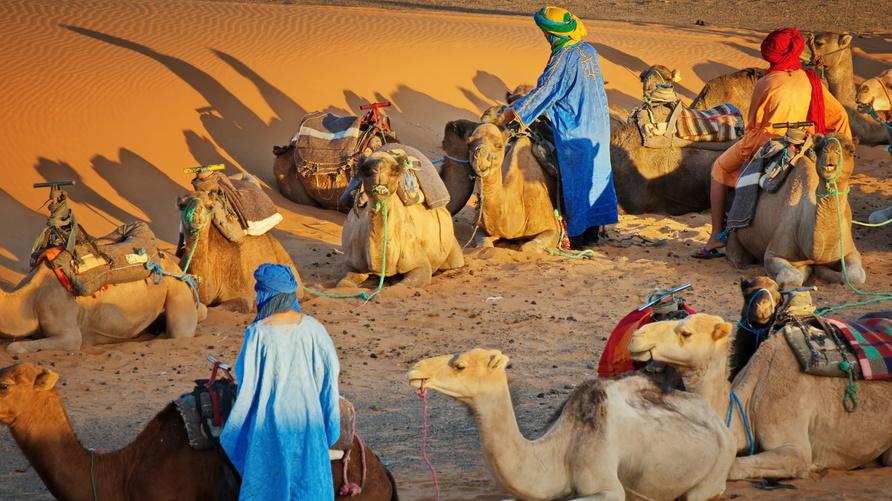 الأمازيغ في الصحراء المغربية