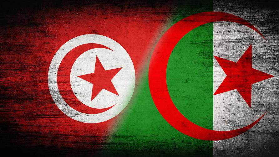 علما تونس والجزائر