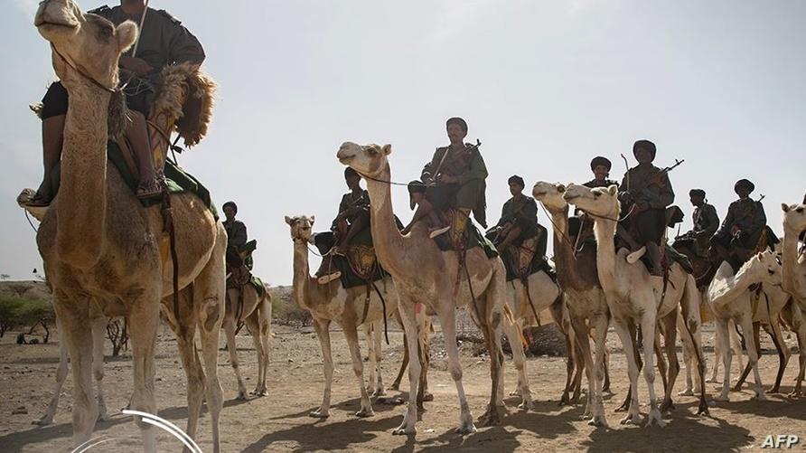 فرقة الجمالة الموريتانية (أرشيف)
