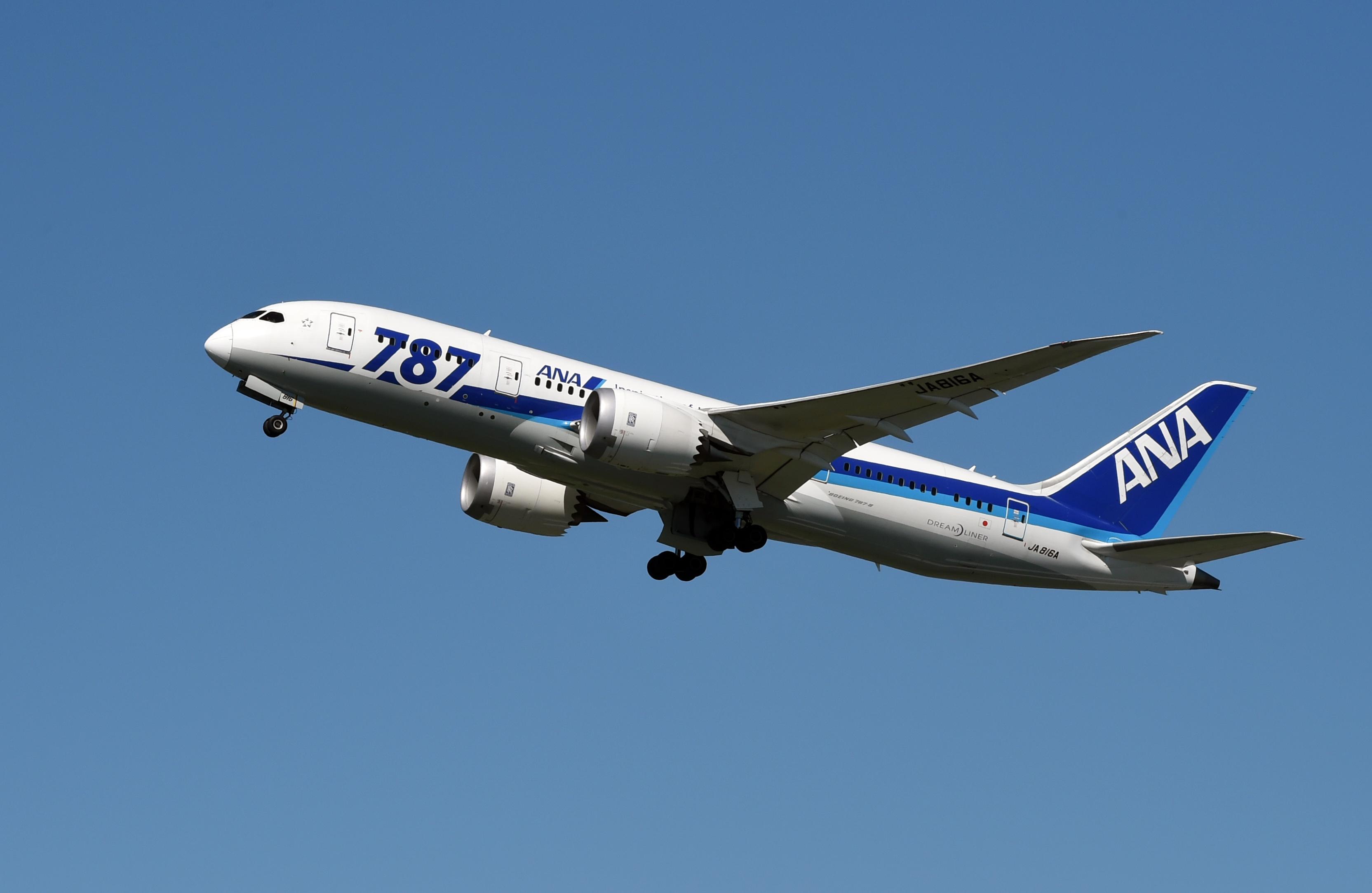 طائرة تابعة لخطوط كل اليابان الجوية