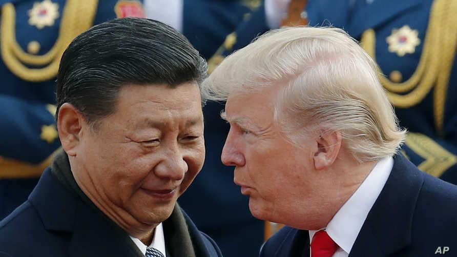 الرئيس ترامب مع نظيره الصيني شي جينبينغ