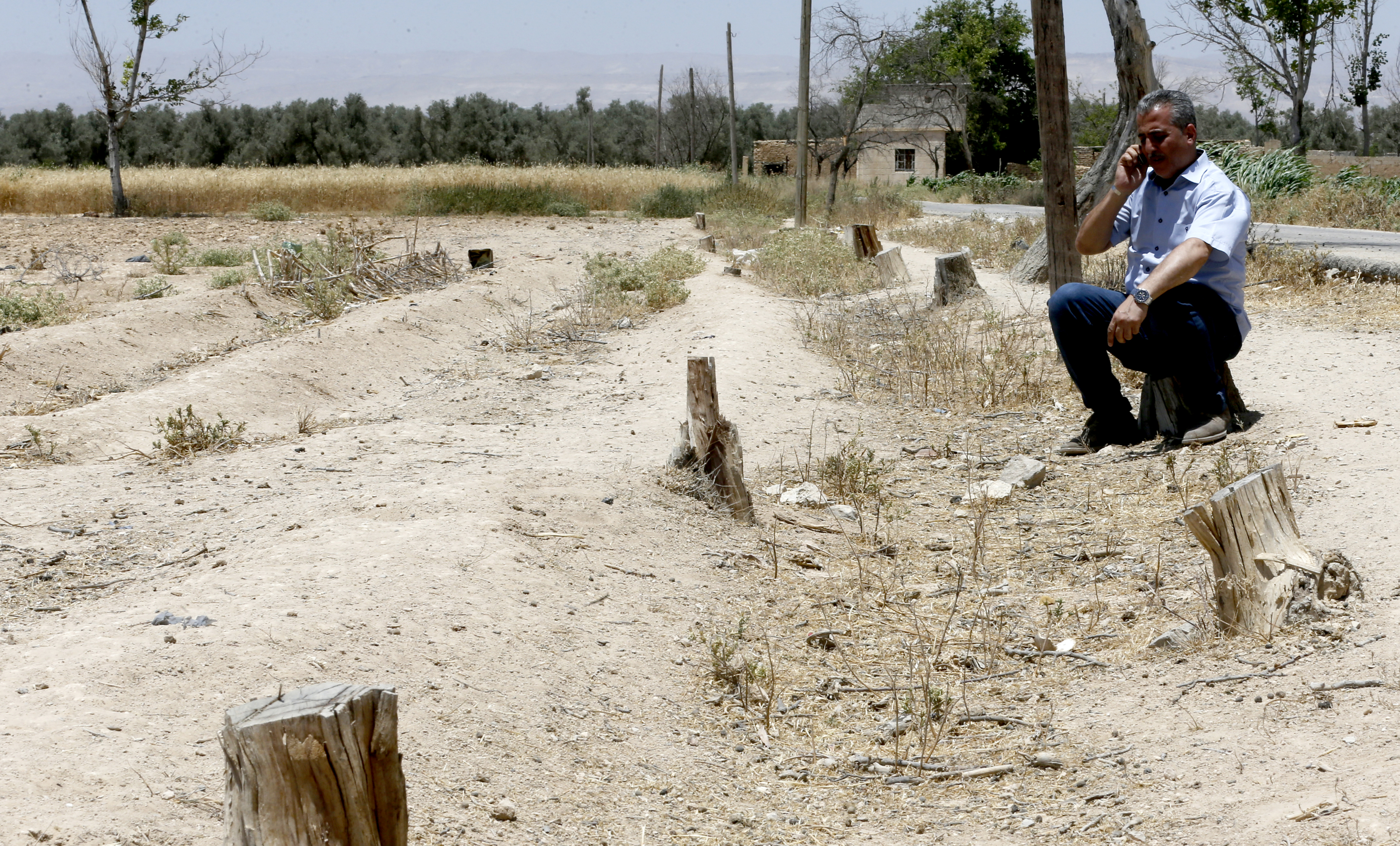 تسببت الحرب طيلة ست سنوات في إتلاف مئات الأشحار في الغوطة الشرقية