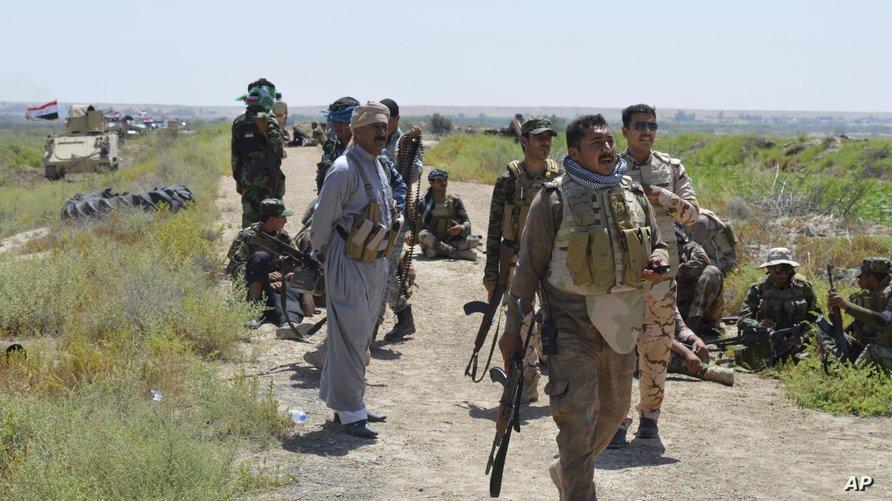عناصر في الحشد العشائري وعناصر أمن خلال المعارك ضد داعش في الفلوجة- أرشيف