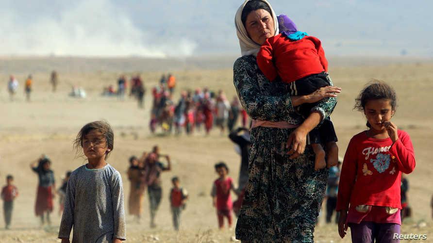 نازحون أيزيديون يفرون من داعش بعد سيطرته على مناطقه في سنجار شمال العراق